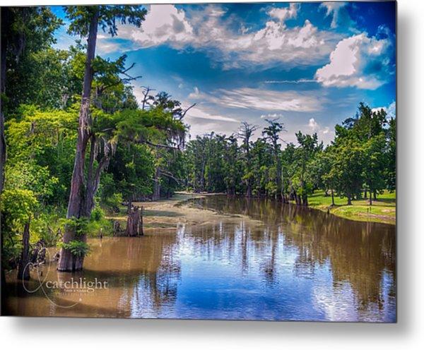 Louisiana Swamp Metal Print by Tammy Smith