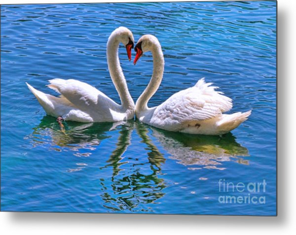 Love For Lauren On Lake Eola By Diana Sainz Metal Print