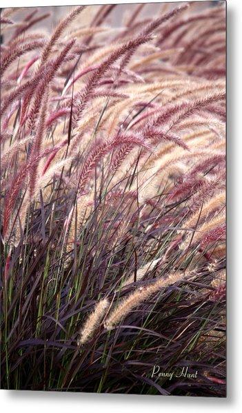 Love Purple Fountain Grass Metal Print