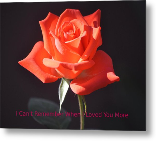 Loved You More Metal Print