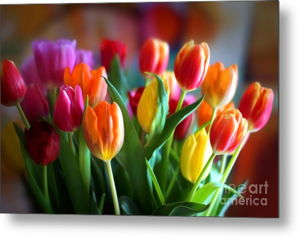 Lovely Tulips Metal Print