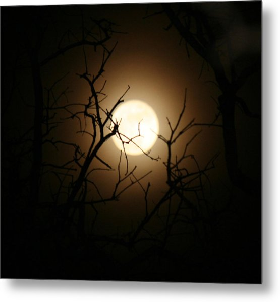 Lovers' Moon Metal Print