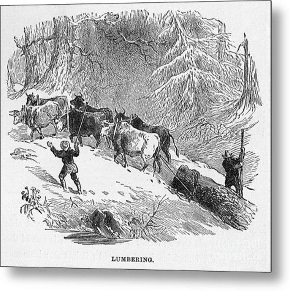 Lumbering - 1878 Metal Print