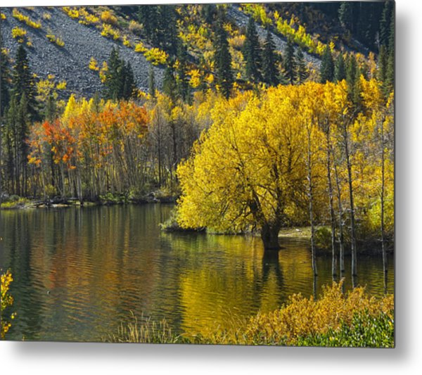 Lundy Lake In Fall Metal Print