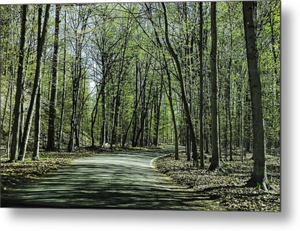 M119 Tunnel Of Trees Michigan Metal Print