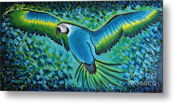 Macaw In Flight Metal Print
