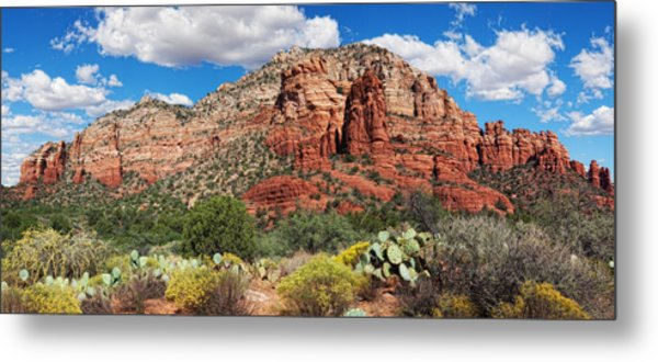 Madonna And Child Panorama Metal Print