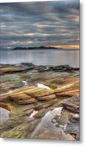 Madrona Sunrise Metal Print