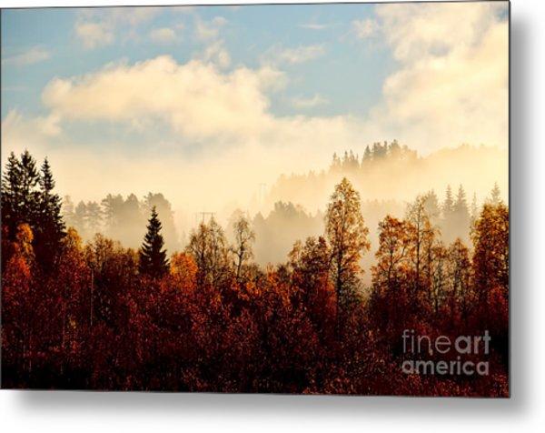 Magic Fall Forest Metal Print