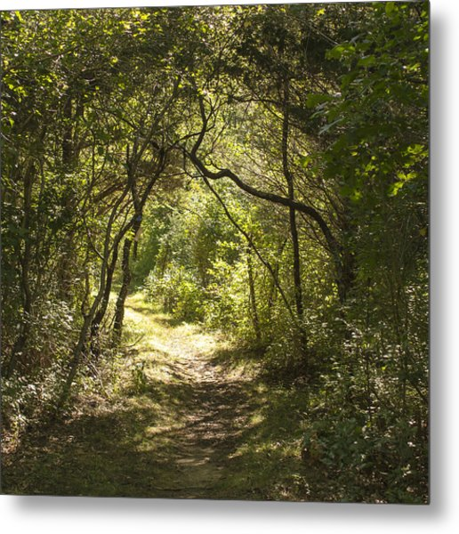Magic Forest Welcome Metal Print