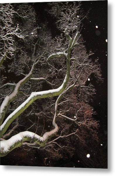 Magic Tree Metal Print