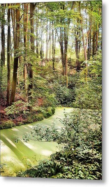 Magic World Of Botanic Gardens Metal Print