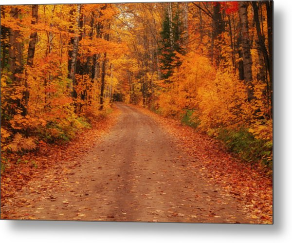 Magical Autumn Mystery Metal Print