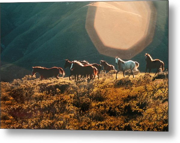 Magical Herd Metal Print