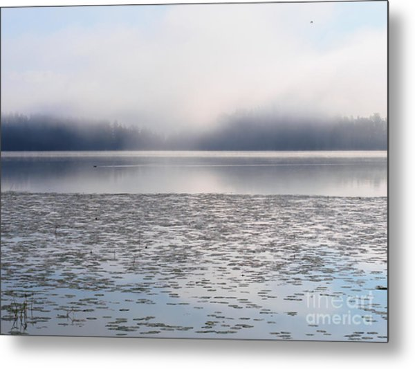 Magical Morning Of Mist Metal Print