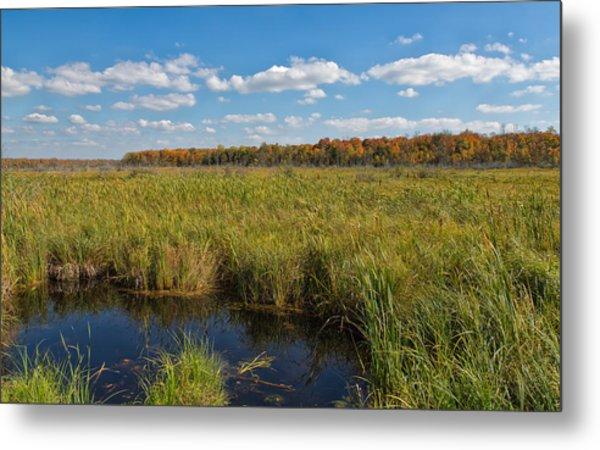 Magnificent Minnesota Marshland Metal Print