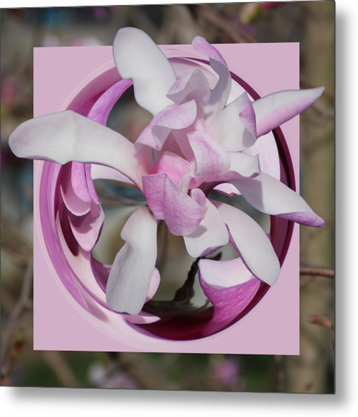Metal Print featuring the photograph Magnolia Blossom Series 1302 by Jim Baker
