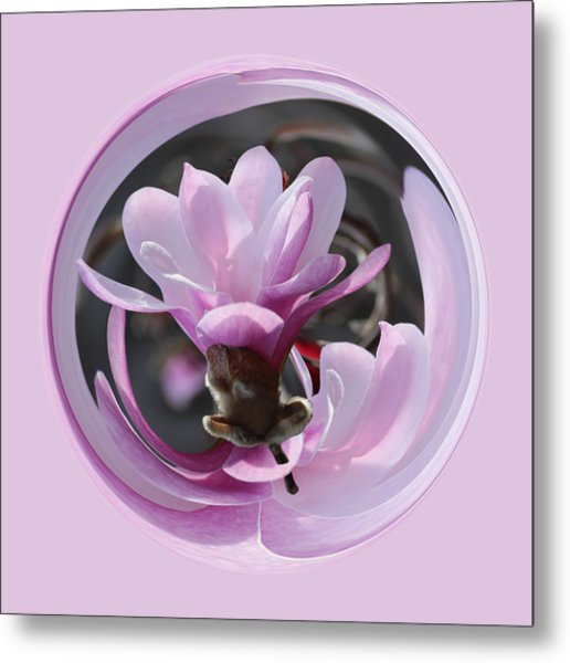 Metal Print featuring the photograph Magnolia Blossom Series 1309 by Jim Baker