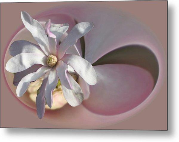 Magnolia Blossom Series 707 Metal Print
