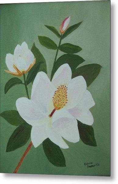 Magnolia Branch Metal Print by Edna Fenske