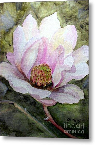 Magnolia In Bloom Metal Print