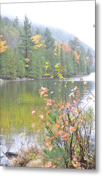 Maine Lake Colors Metal Print