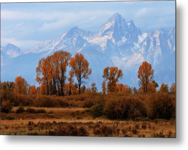 Majestic Backdrop Metal Print
