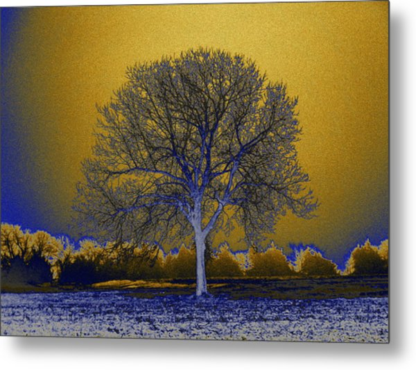 Majestic Gold Metal Print