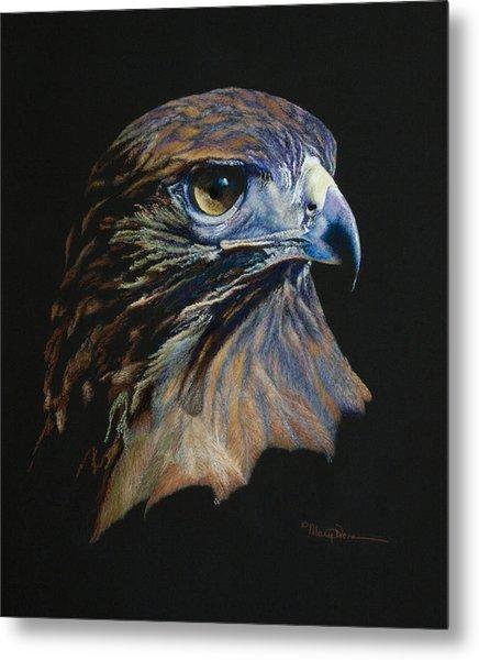 Majestic Raptor Red-tail Hawk Metal Print