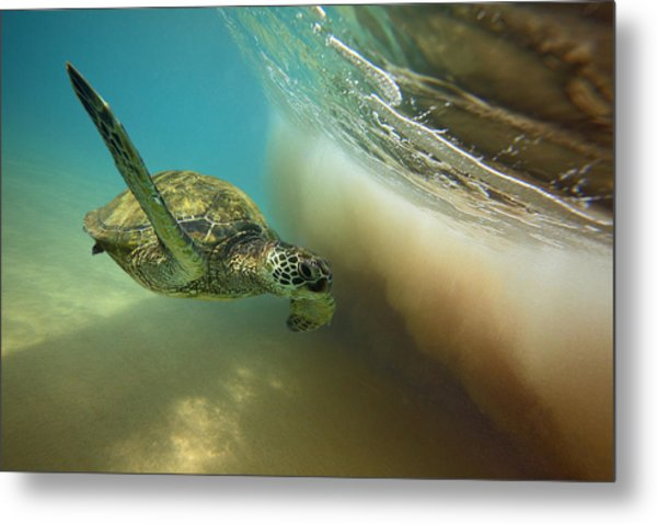 Makena Surfer Metal Print