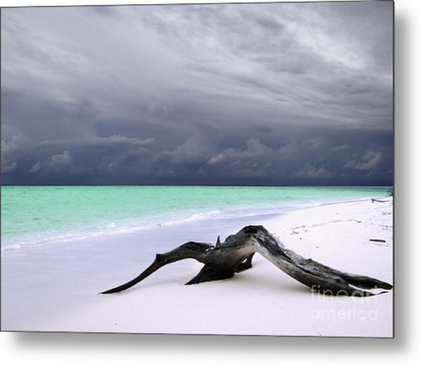 Maldives 02 Metal Print by Giorgio Darrigo