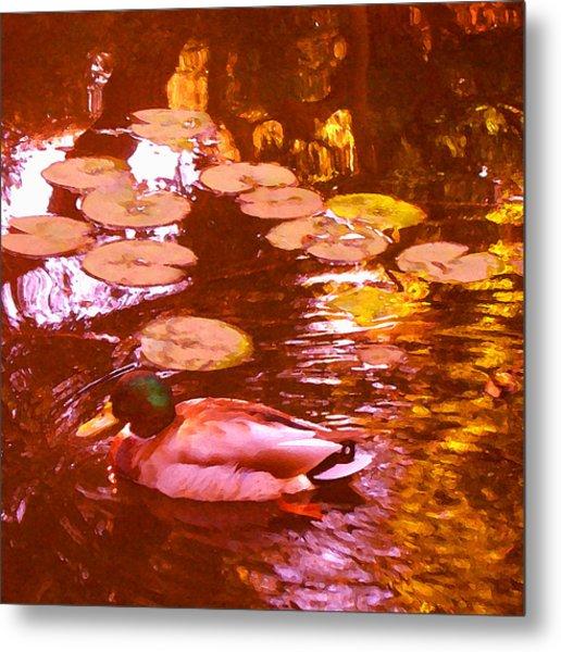 Mallard Duck On Pond 3 Square Metal Print