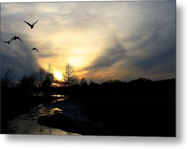 Mallards Silhouette At Sunset Metal Print