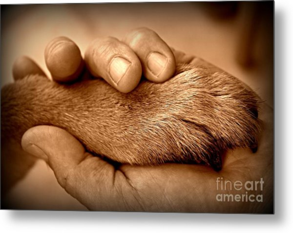 Man And Dog Metal Print