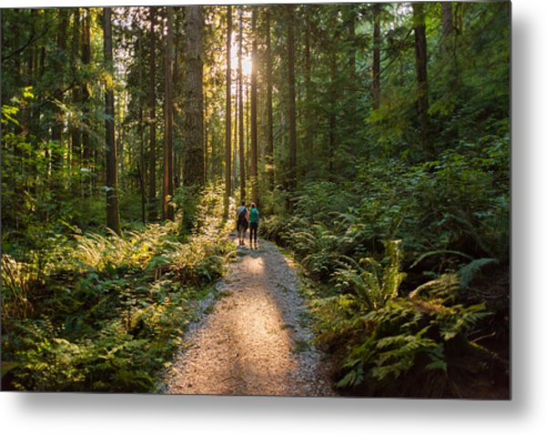 Man And Woman Hikers Admiring Sunbeams Streaming Through Trees Metal Print by PamelaJoeMcFarlane