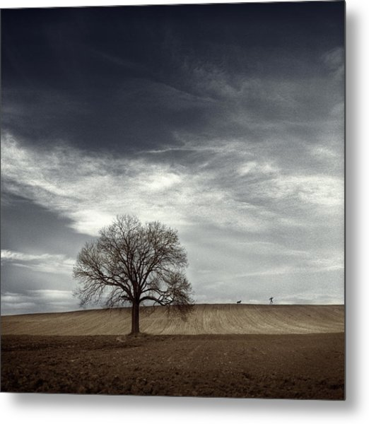 Man Hounded By Dog Metal Print by David Heger