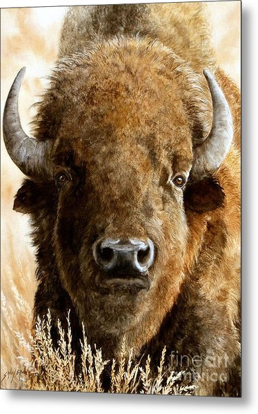 Manifest Destiny  Sold Metal Print