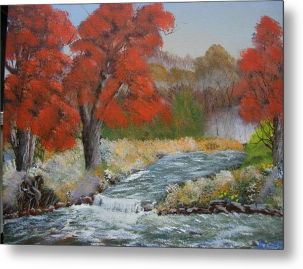 Maples On A Mountain Stream Metal Print by Joe Reynolds
