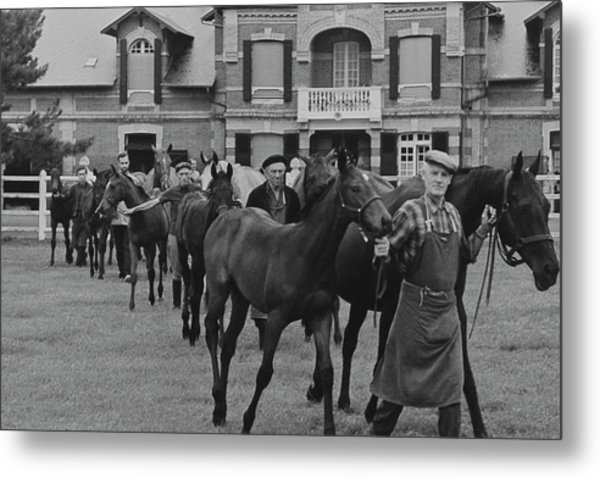 Mares And Foals At The Farm Of Marie-helene De Metal Print by Henry Clarke