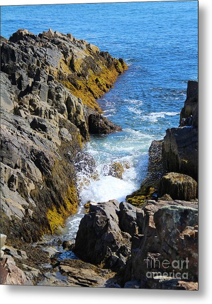 Metal Print featuring the photograph Marginal Way Crevice by Jemmy Archer