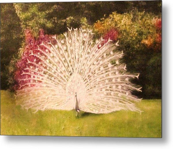 Maria's White Peacock Metal Print