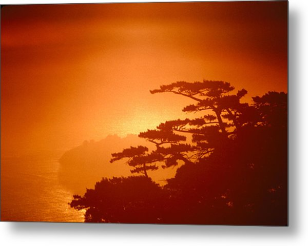 Marin County Sunset Fog Metal Print