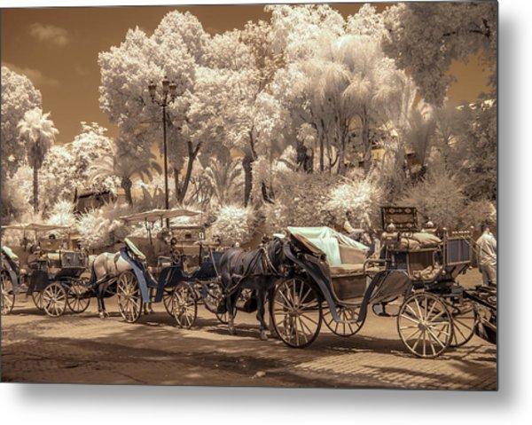 Marrakech Street Life - Horses Metal Print