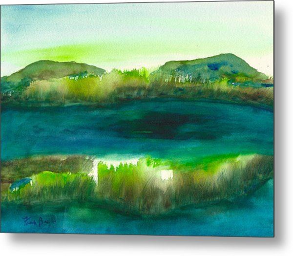 Marsh Abstract 3 By Frank Bright Metal Print