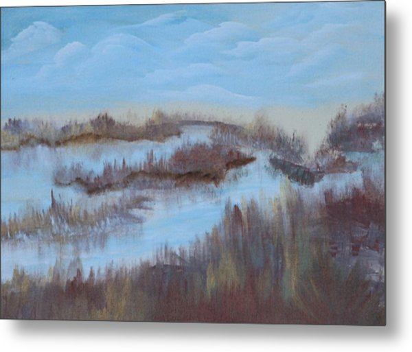 Marsh Land Metal Print by Mary Grabill