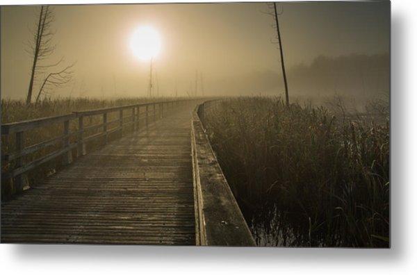 Marsh Morning Metal Print