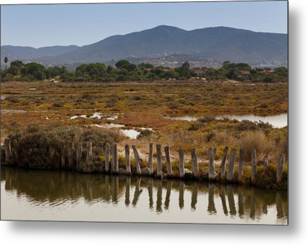 Marsh Metal Print by Paul Indigo