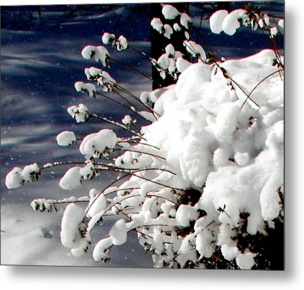 Marshmallow Sprouts Metal Print