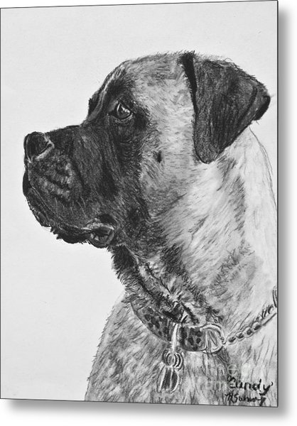 Mastiff In Profile Metal Print