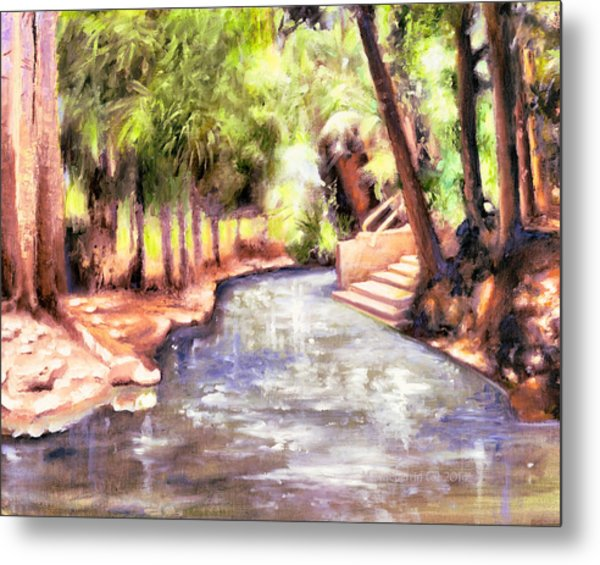 Mataranka Hot Springs Metal Print